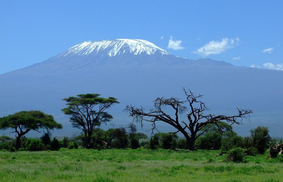 kilimanjaro for news story